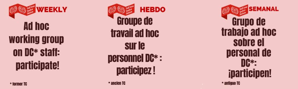 Grupo de trabajo ad hoc sobre el personal de DC